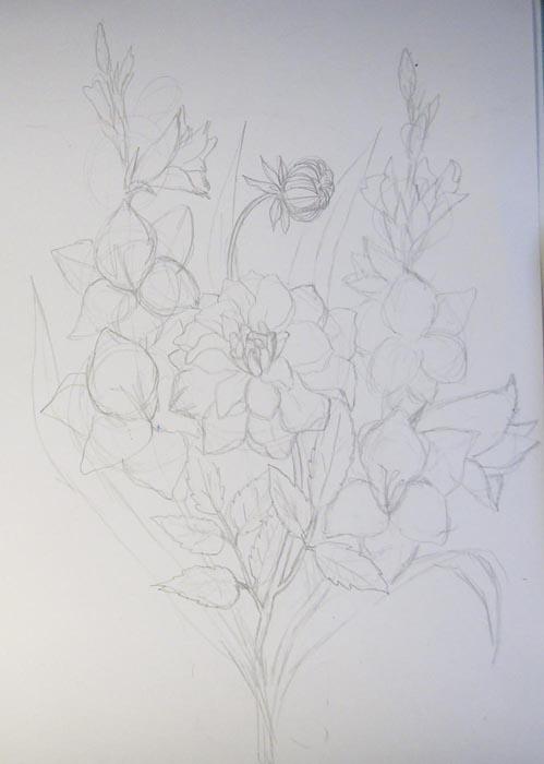 Нарисуйте оба гладиолуса