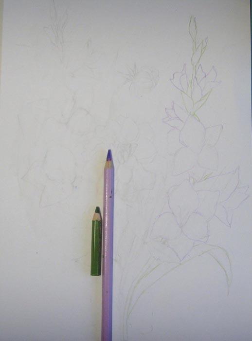 Ластиком аккуратно удалите карандашный набросок