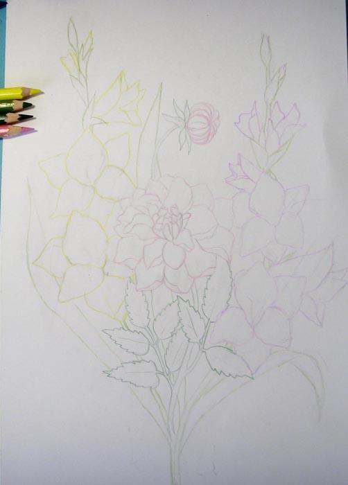 Обведите розовым цветом очертания георгина, желтым – очертания второго гладиолуса, а зеленым – контуры стеблей и листьев