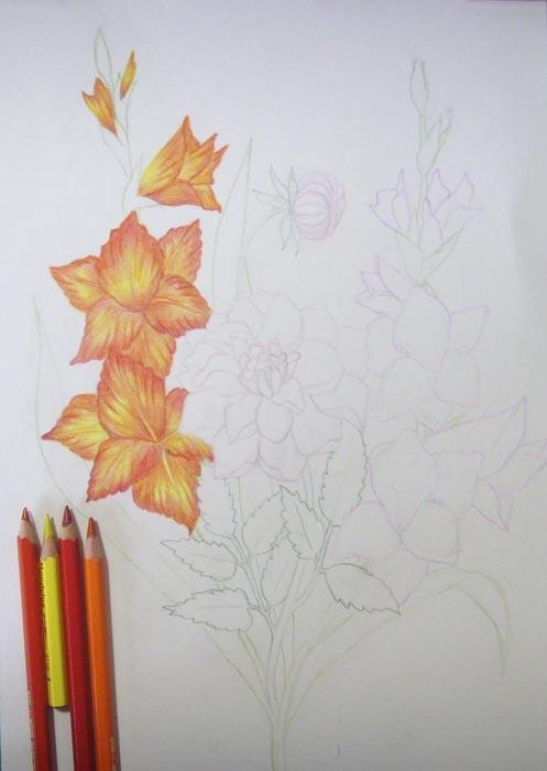 Красными и оранжевыми оттенками прорисуйте прожилки и складки на цветках гладиолуса