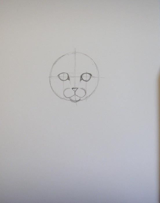 Нарисуйте очертания глаз и носа, наметьте подбородок и щеки