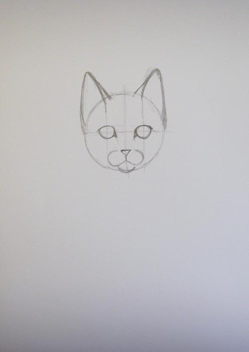 Прорисуйте кошачьи уши, стараясь сделать их примерно одинаковыми
