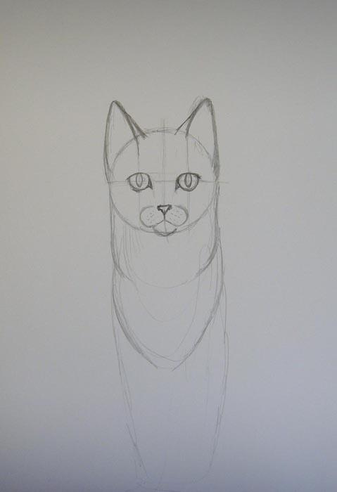 Нарисуйте кошке зрачки