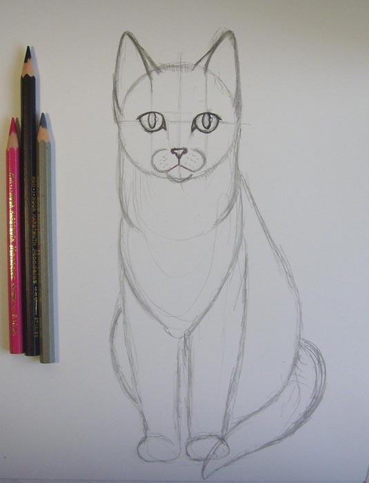 Черным карандашом обведите глаз и зрачок. Розовым карандашом обведите нос, а серым прорисуйте контуры тела животного
