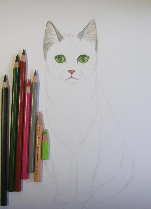 Глаза кошки раскрасьте зеленым и черным цветами, а нос – розовым. Внутреннюю часть ушей закрасьте телесным и серым