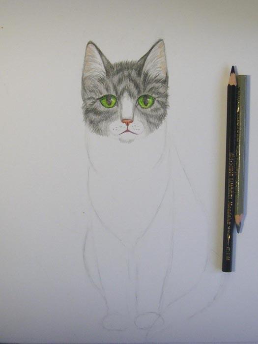 Шерсть на голове раскрасьте светло-серым карандашом, а затем черным прорисуйте полоски
