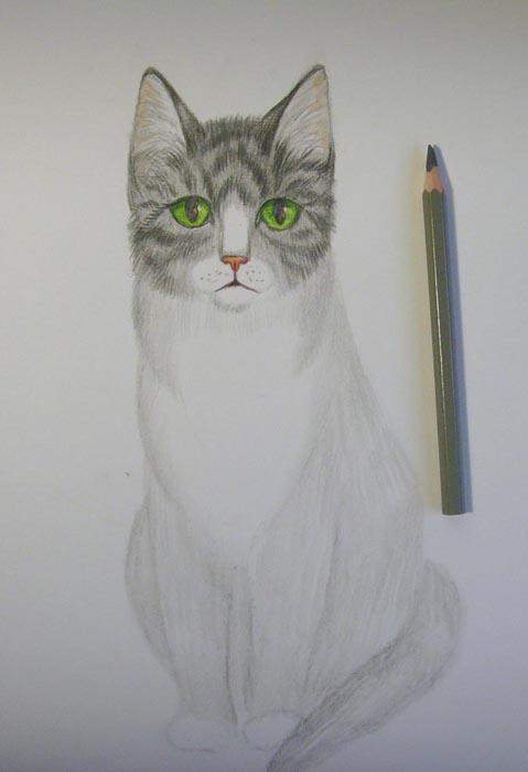 Тело кошки заштрихуйте серым цветом