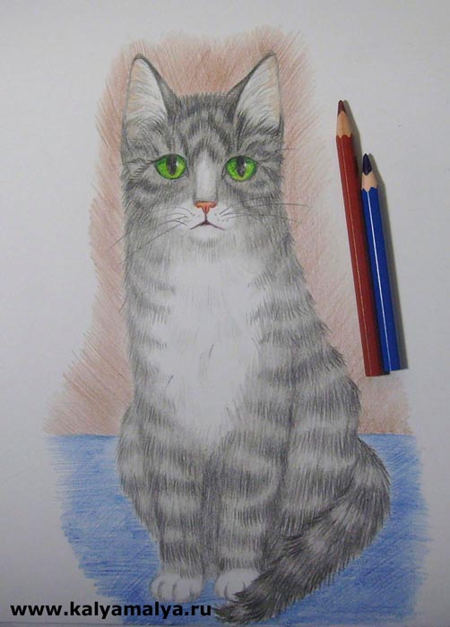 Синим карандашом заштрихуйте задний фон, а красно-коричневым – пол, на котором сидит кошка