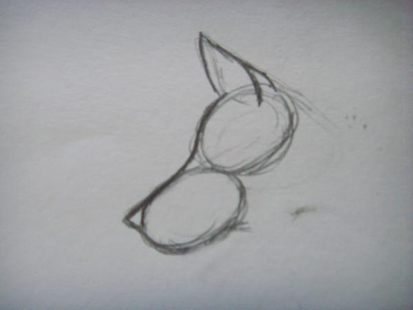 Прорисуйте нос и изобразите ухо