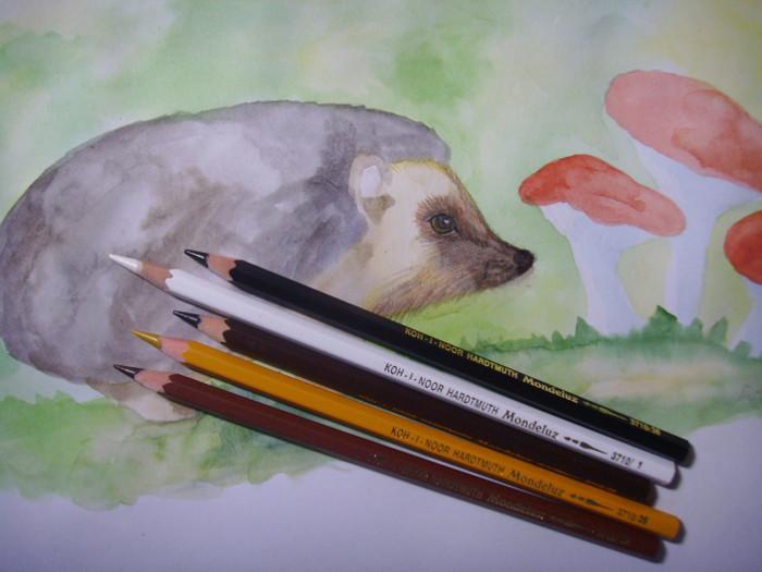 Акварельными карандашами обозначьте шёрстку и прорисуйте усики