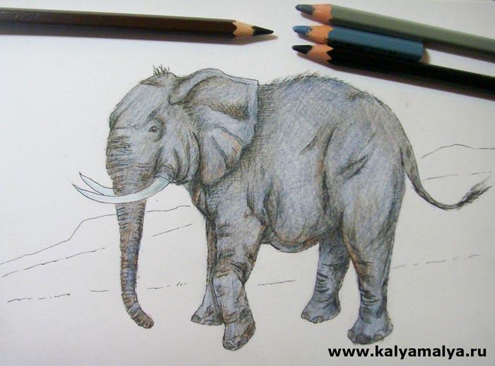 Серым и коричневым цветом закрасьте тело слона. Старайтесь делать выразительные, длинные штрихи, чтобы точнее передать фактуру грубой и морщинистой кожи животного. В самых темных местах, куда падает тень, добавьте немного черного цвета