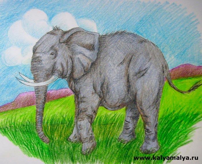 Как нарисовать слона?