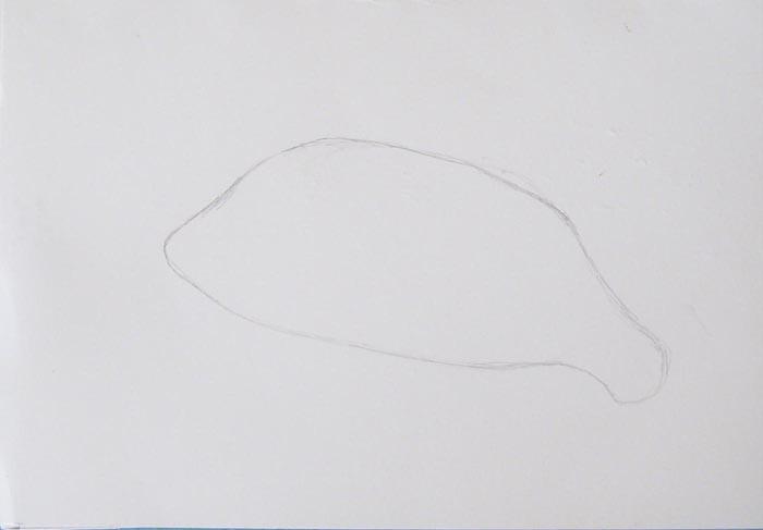 Нарисуйте очертания тела окуня карандашом