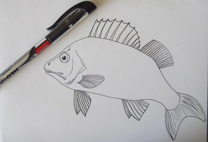 Обведите контуры рисунка ручкой