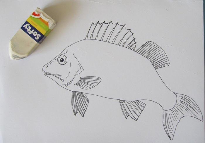 Сотрите ластиком карандашный набросок
