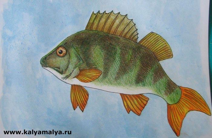 Как нарисовать рыбу?