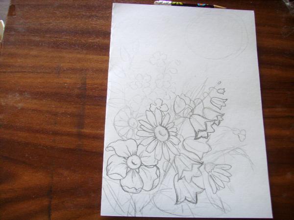 Сделайте набросок полевых цветов