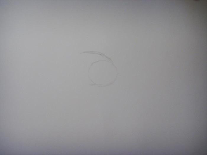 Нарисуйте круг для обозначения головы и наметьте начало туловища