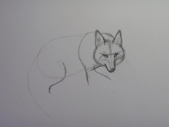 Более детально прорисуйте мордочку зверя