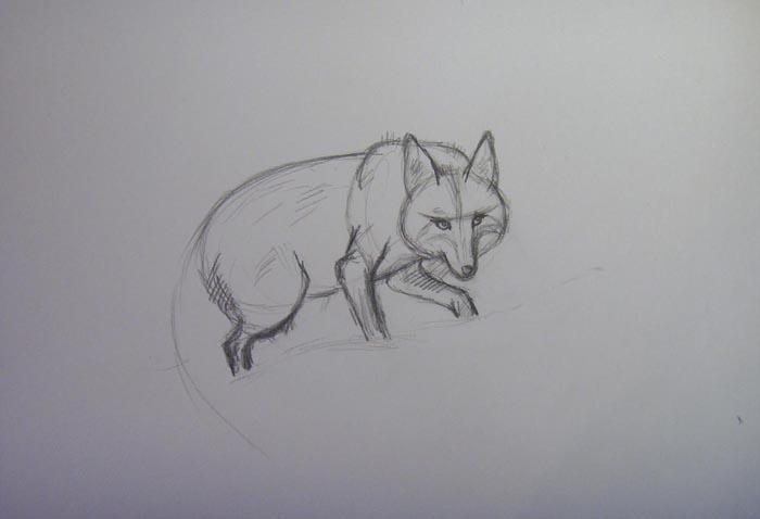 Чётче изобразите заднюю лапу и тело лисы