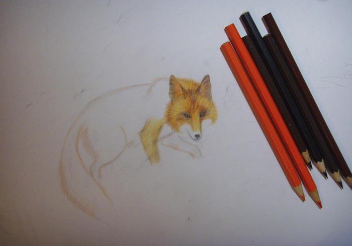 Раскрасьте нос, рот и глаза лисы, прорисуйте шерсть на голове, шее и лапе