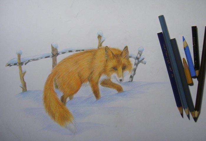 Раскрасьте забор из веток и углубите тени на снегу под лисицей