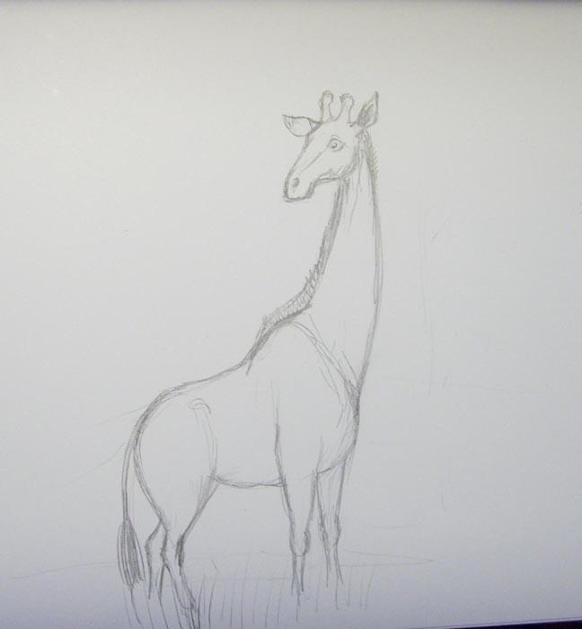 Прорисуйте шею, нарисуйте рожки, уши, глаз, ноздри и хвост
