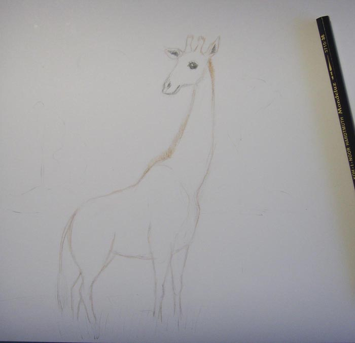 Черным карандашом раскрасьте глаз, нос и внутреннюю часть ушей животного