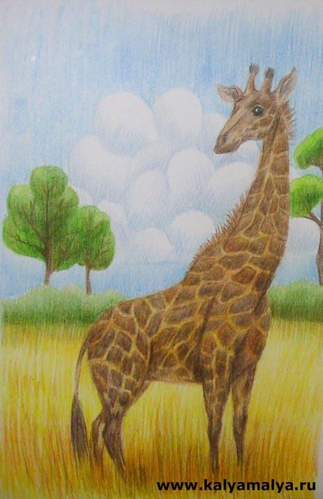 Как нарисовать жирафа?