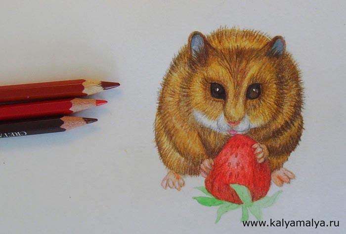 Красными карандашами закрасьте ягоду. Коричневым карандашом нарисуйте на ней точки