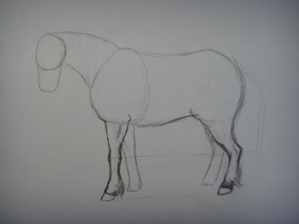 Наметьте две правые ноги лошади