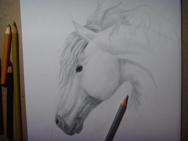 Начните прорисовывать гриву