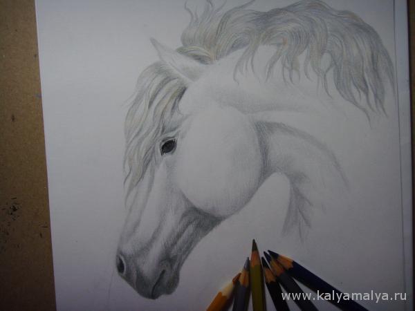 Раскрасьте гриву коня