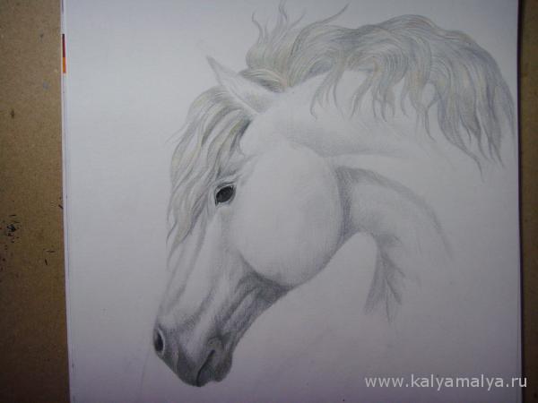 Как нарисовать голову лошади?