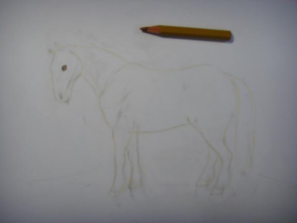 Светло-коричневым карандашом обрисуйте контуры лошади