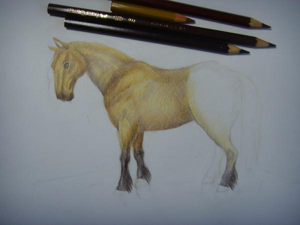 Начните раскрашивать коня светло-коричневым и темно-коричневыми карандашами