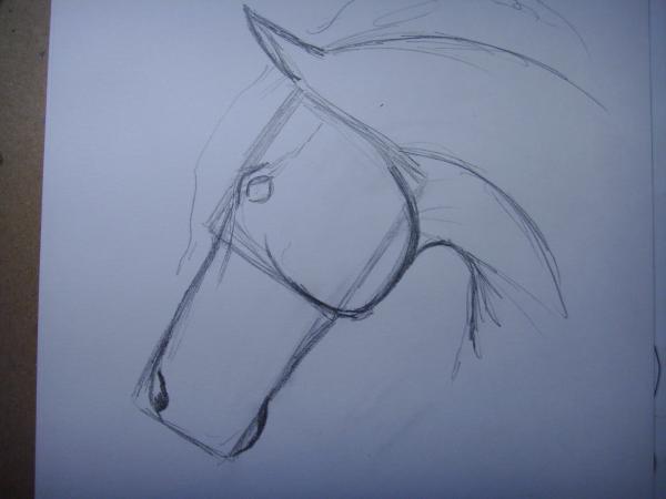 Нарисуйте ноздри лошади и нижнюю челюсть коня