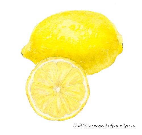 Учимся рисовать. Лимон