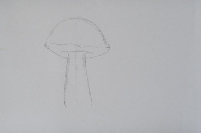 Изобразите ножку белого гриба