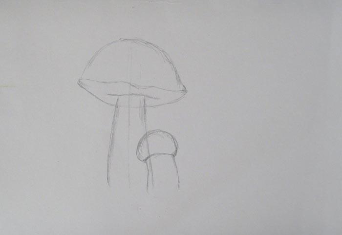 Нарисуйте маленький гриб
