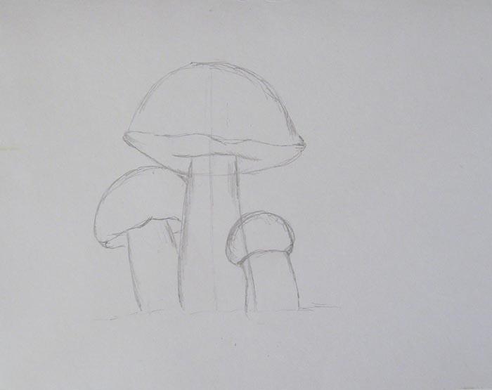 Пририсуйте еще один белый гриб средних размеров