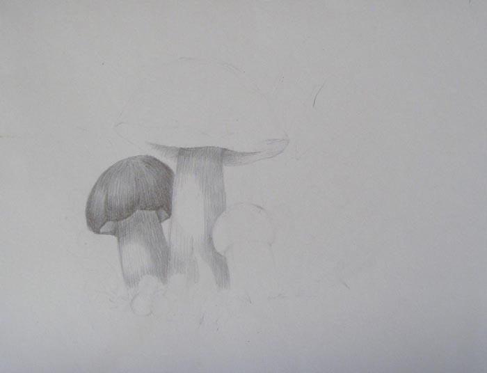 Заштрихуйте ножку большого гриба, а также внутреннюю часть его шляпки