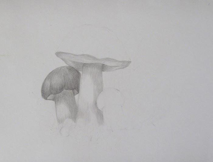Аккуратно заштрихуйте нижнюю часть шляпки большого гриба, чтобы ее очертания стали более контрастными