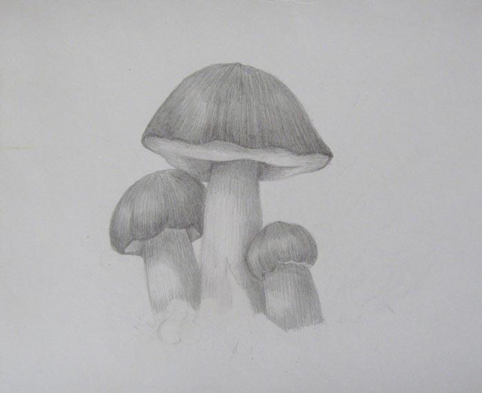 Затонируйте самый маленький из грибов