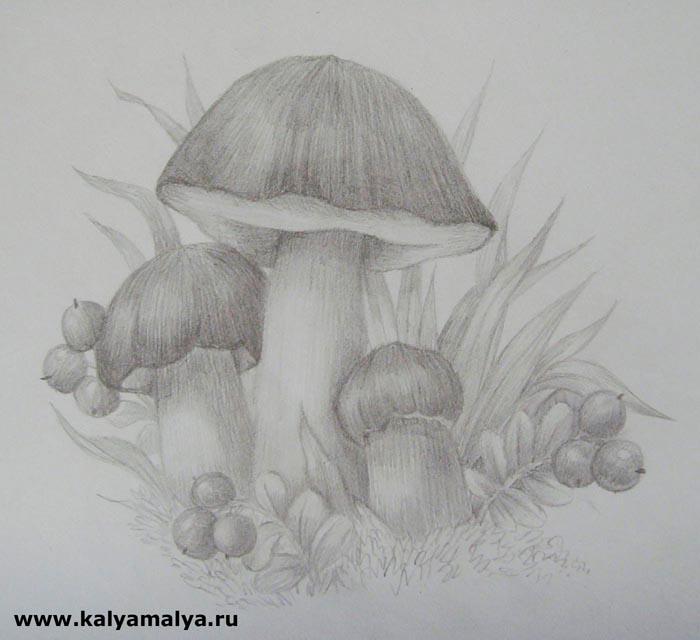 Как нарисовать грибы?