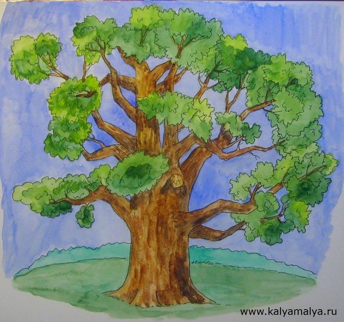 Как нарисовать дуб?