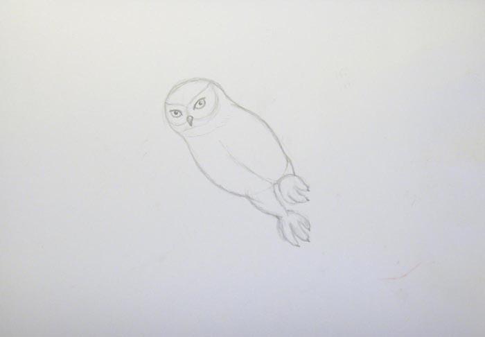 На голове совы нарисуйте глаза и небольшой клюв