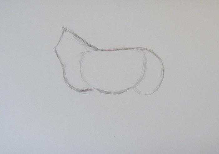 Пририсуйте к туловищу круп, грудь и шею пони