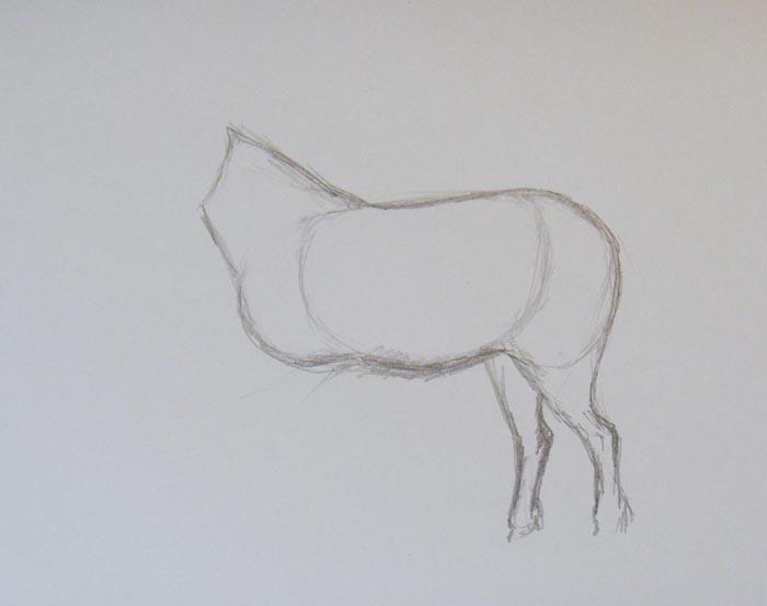 Изобразите задние ноги животного