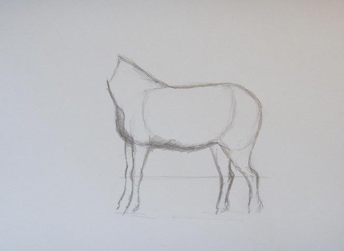 Нарисуйте передние ноги пони